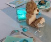 Vign_decoration_table_anniversaire_enfant