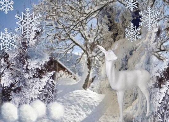 Vign_decoration_vitrine_noel