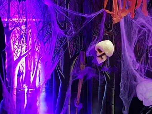 Vign_decors_salles_pour_halloween