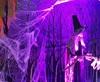 Vign_theme_halloween_decors