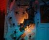 Vign_theme_halloween_theme_soiree_halloween